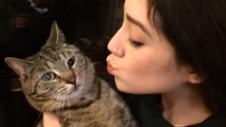 고양이의 표정 보면 빵 터짐