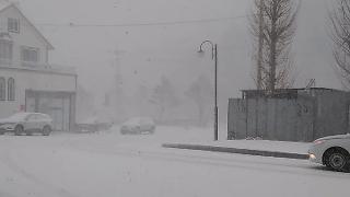 강원도 강릉 오늘의 날씨 실시간 눈이 내려요