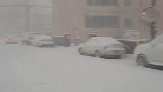강릉 현재 날씨