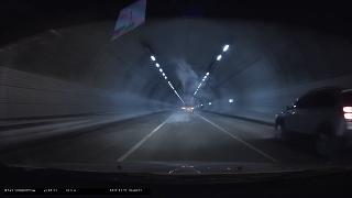 터널입구에서 떨어진 고양이(?) 로드킬