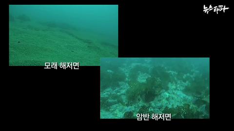 뉴스타파 - '쇼쇼쇼'와 '슈퍼갑질'의 나라(2014.7.1)