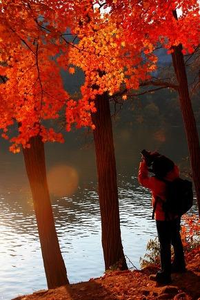 Photo shoots in autumn