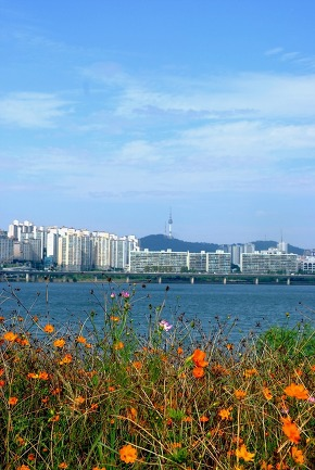 View of Seoul City (2)