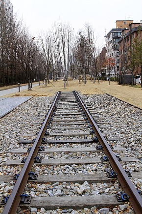 Railroad track of the park