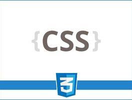 Front-End/CSS' 카테고리의 글 목록