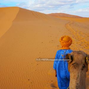 [모로코_마라케시] 마라케시 사막투어 선택하기
