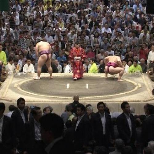 [일본/반응] 스모를 관전하는 트럼프 대통령의 표정이...