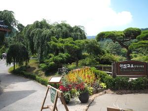 휴가철 여행: 춘천 - 아침고요수목원