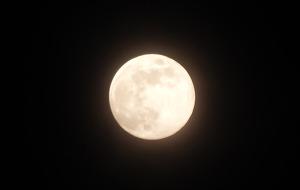 보름 하루전날 달사진~