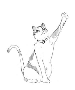 캣묘냥 (Cat 猫 냥)