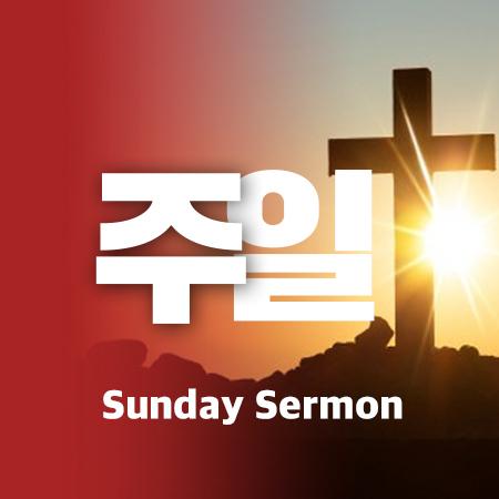 T00 [16년12월][로마서 8:12-39] 넉넉히 이기는 전쟁