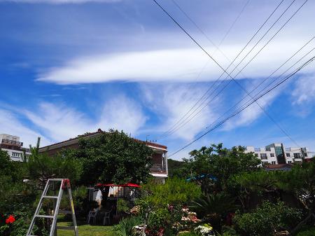 하늘에 구름이 신기하게 떠서 찍어봤습니다~