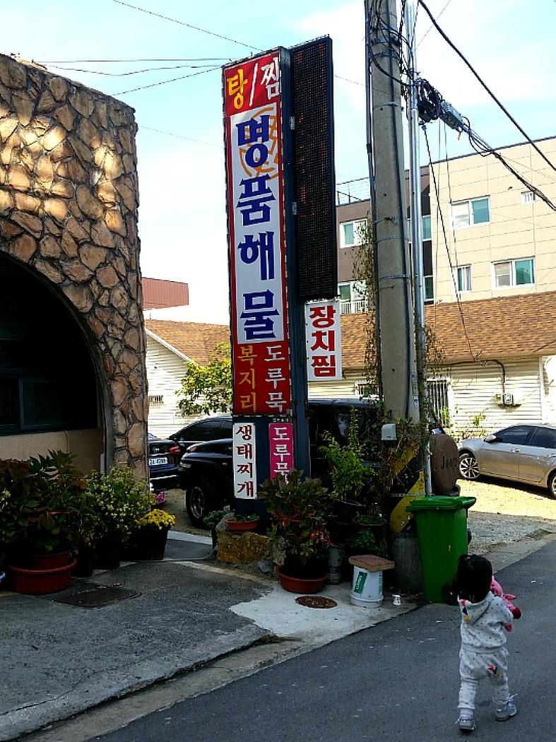 동해시 천곡동 생생정보통 맛집 [명품해물] 해물찜- 솔직한.