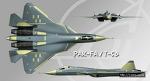 러시아 5세대 전투기 파크파, PAK-FA / T-50 DemoFlight #4