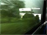비오는 날 버스 안에서 날아다닌 난상들