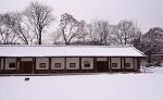 티스토리 달력 사진 공모 (겨울)