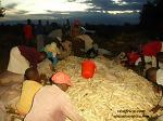 케냐 사람들의 주식 우갈리