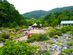 포천 평강식물원 다녀오다 - 자연의 쉼터