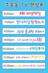 조중동 방송 저지 캠페인용 판넬(조중동 방송 편성표)