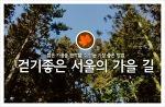 걷기 좋은 서울의 가을 길 4곳