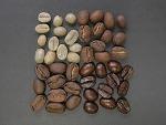 커피홀릭-클로로겐산 다이어트 커피