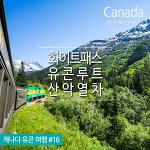세상에서 가장 아름다운 기찻길, 캐나다 산악열차 화이트패스&유콘루트 White Pass & Yukon Route