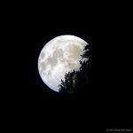 산에 걸친 보름달