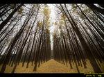 경주 가을여행. (경주 도리마을,  운곡 서원,  산림 환경 연구원)