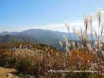 탁트인 가을풍경과 계곡이 멋져요, 유명산