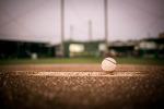 야구 사진