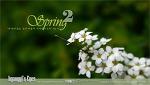 봄나들이 2