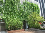 친환경 건축으로 시원한 여름나기