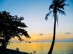 태국 - 요가여행자 태국으로 떠나다 1편 (푸켓, 코따오, 코팡안 편)