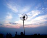 새벽. 하늘과 맞닿는 시간