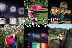 2014 서울사진촬영대회 & 서울세계불꽃축제 사진공모전 입상