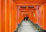 Fushimi Inari Taisha (伏見稲荷大社)
