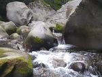 여름 최고의 제주휴양지, 돈내코계곡 사전답사