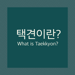 [Korea Mrtial Arts Taekkyon] What is Taekkyon?
