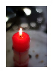 (詩) 기도하는 시간