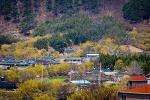 구례 산수유 마을 풍경..