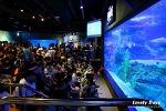 부산 여행: 부산 아쿠아리움(SEA LIFE) - 해저의 세계