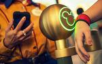 디즈니의 빅데이터 전략 'MyMagic'