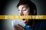 감기는 왜 Cold일까? 감기에 걸리기 쉬운 최적의 환경은?