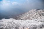 태백산 겨울산이 주는 또다른 묘미, 햇살 찬란한 순백의 상고대를 만나다.