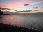 브리즈번 웰링턴포인트 물길열리는 바다