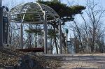 봄이 오는 안산 해오라기근린공원에서
