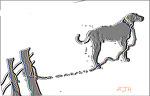 개 목줄 불안