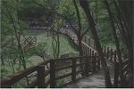 [라디오원고] 걷고 싶은 아름다운 산책길 2편, 괴산 산막이옛길.