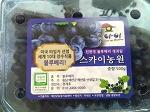 [스카이농원]건강한 흙에서 나오는 건강한 먹거리(feat.블루베리)