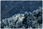 눈덮인 지리산 풍경